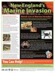 Marine Invasion Poster from Maine Sea Grant